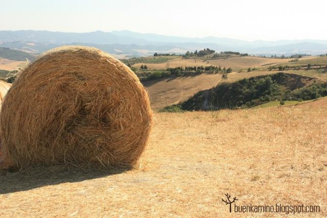 Mirador de Volterra paisaje toscano