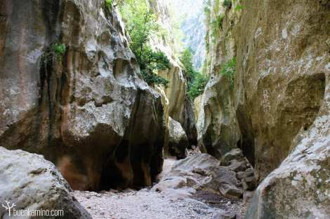Interior Torrent de Pareis