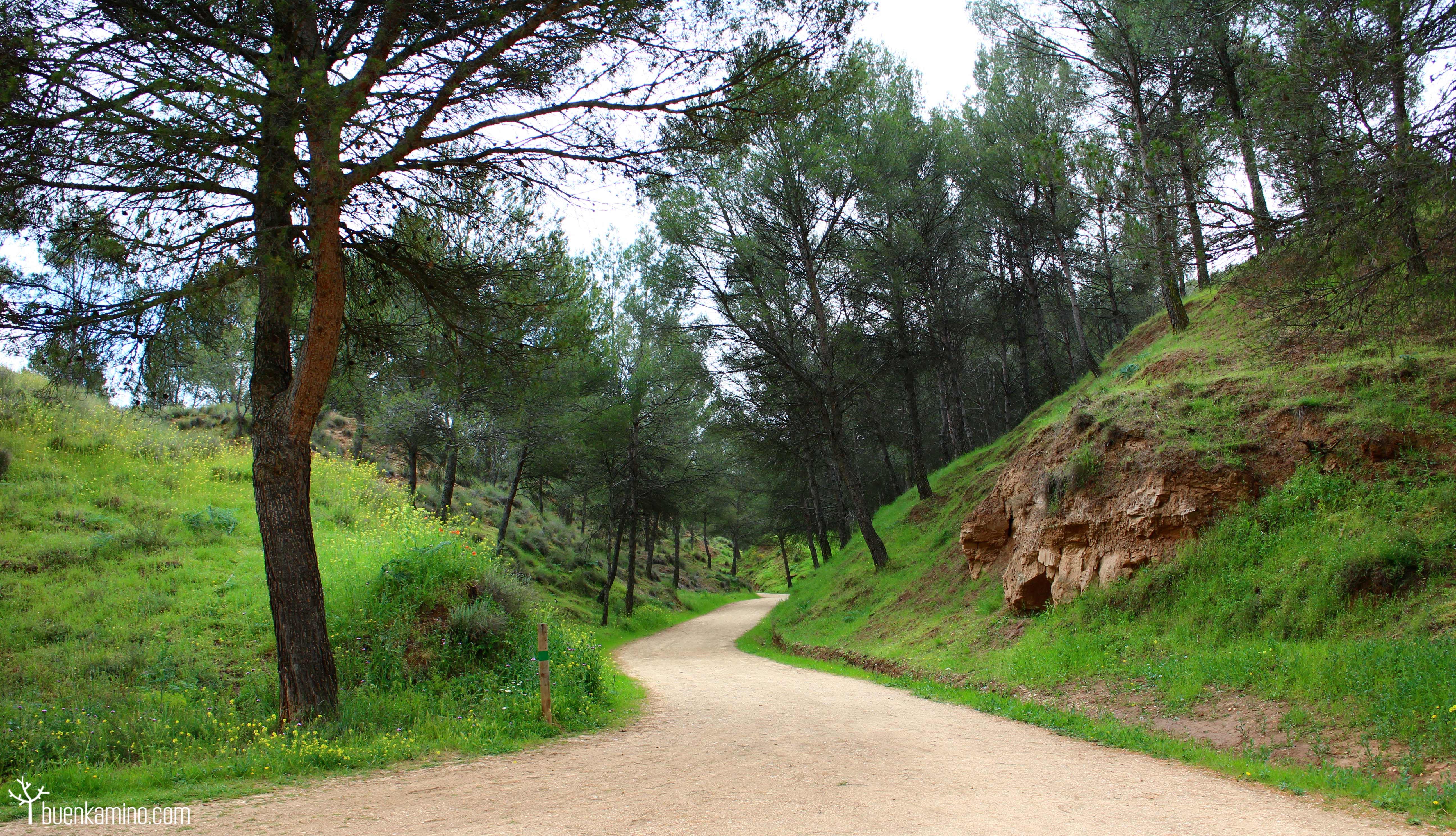 Ecce homo y castillo rabe en alcal de henares for Parque mueble alcala la real