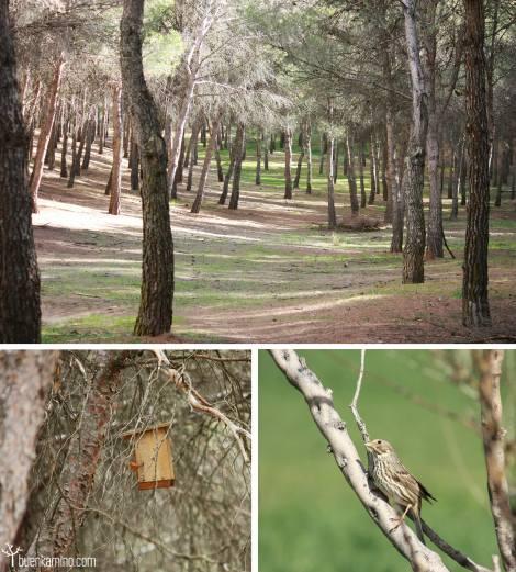 parque-natural-los-cerros
