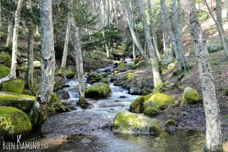 Arroyo del Sestil camino