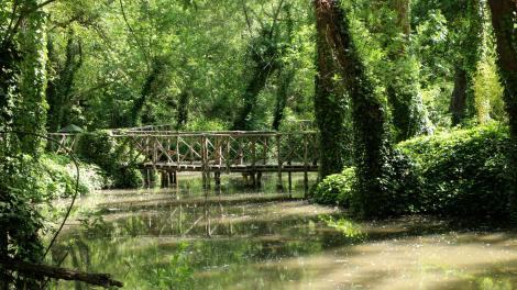 Puente estanque maravilla natural